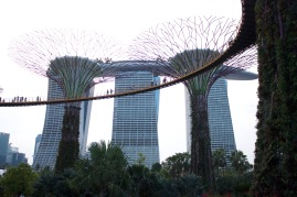 Marina Bay Sands in the background and Gardens by the Bay